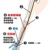 【基礎から学ぶ】正中神経【解剖生理学】