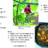 【簡単レシピ】【糖質オフ】残り物のカレーが変身!〜旅するおうちごはんレシピ☆ その25〜