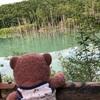 ゆかりちゃんに会いに北海道〜夏の陣 青い池