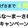【もう4周年か】ポケットファンディング「うちな〜まーさむんキャンペーン」開始!