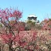 大阪城梅林と而今のラーメン