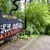 【東京都あきる野市】深澤渓 自然人村の紹介〜川が流れる林間サイトでマイナスイオンいっぱいのキャンプ場〜