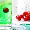 夏の甘味飲料で脳の遺伝子が損傷?回復にDHA?