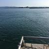 浜名湖海釣り公園 逃した魚にリベンジ