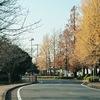 2018年秋10月期放送開始のドラマ期待度一覧(放送日・キャスト)