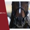 七夕賞2021 この季節に急上昇する馬がいる