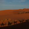 サハラ砂漠ツアーにて注意しておきたいこと(と、モロッコの魅力についてすこし)