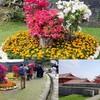 華やかなお花いっぱいの首里城(那覇市)