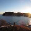 南三陸の旅4(ラムサール湿地登録地・志津川湾ーコクガンを訪ねて)