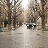 東京大学の女性率が2割を超えないのは何故か