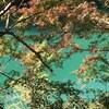 渓谷と紅葉、そして隠れ家温泉@徳島