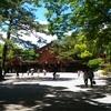 名古屋旅のメインは熱田神宮だけど、叔父さんが暴走しすぎる件。