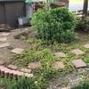 2021年4月の庭の様子