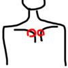 解剖学の先生に教えてもらった肩もみの方法を伝授します