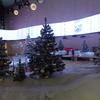 ヘルシンキ空港とクリスマスツリー