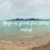 ストレスは先回りして解消する&マット受注について