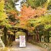 京都 数珠供養 赤山禅院 11月23日