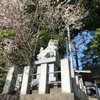 小山御領神社の狛犬