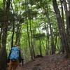 夏至に入るカヤハゲ遊山 稜の道