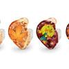 「イヤホン速報」の記事を読む→Westone、「四季」をモチーフとした独特なデザインのカスタムIEMデザインを発表! 第一弾は紅葉!