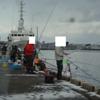 今日の紋別港釣り情報/