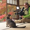 岩合光昭さんが撮った「世界ネコ歩き『京都の四季プロローグ』」を観る。写真集『ねこの京都』も発売中です!