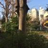 西新宿・昭和が歴史に埋もれゆく空間