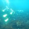 WR250Rで伊豆大島ツーリング④ 体験ダイビングでガチ酔い。