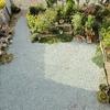 昭和30年代の団地・お庭も少しキレイにしました。