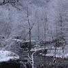 飛騨の冬景色 【久しぶりの雪景色】 Vol 2