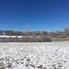 雪が積もってるのに暖かい。お散歩日和 in Denver 。