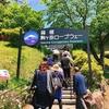 神奈川県・箱根【観光】『箱根・駒ヶ岳ロープウェー』で古代祭祀の地でもある雲上のパワースポット「箱根元宮」に行って来た!