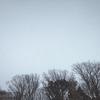 獣たちの冬時間