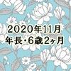 2020年11月(年長・6歳2か月)のまとめ