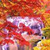 袋田の滝&竜神大吊橋ツアー【常陸を染める紅葉めぐり】