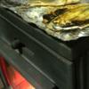 干物を薪ストーブで焼く