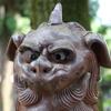 金沢市寺町に鎮座する闕野神社の狛犬は色が違う