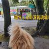 【わんこと旅】  阿蘇カドリー・ドミニオン ≪熊本県≫