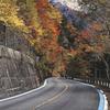秋を感じるドライブ 石鎚スカイライン