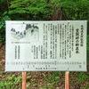 長野県天然記念物    笠取峠の松並木