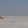 インドのウユニ塩湖?絶景が広がるホワイト・ラン