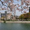 お花見 @広島市 平和記念公園