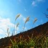 美しい景色は心のシャッターよりも、カメラのシャッターで・・・ by ニコ