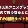 【萌え系アニメグッズ】初めて買うならどこ?おすすめ通販サイト紹介!
