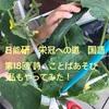 日能研 栄冠への道 国語第18回「詩 ことばあそび」私もやってみた‼︎