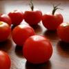The Secret Garden ② アイルランドでプチ栽培できる3種類のトマト