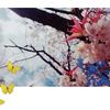 日々勉強!/ひまわり歯科 2017/4/19