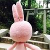 日本最強のパワースポット?御岩神社へ行ってきたお話。