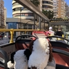 スペイン マラガ② オープントップバス ※追加写真、追記あり