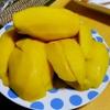 【今日の食卓】サルちゃんのタイ友が激安スーパーで15個1700円で買ったメキシコのマンゴー。5個分けてもらった。なんていうの?エグミ?が強くて、タイのナムドクマイ種より好きかもw。 Mexican Mango. #食探三昧